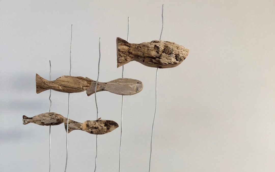 Artesanía orgánica, madera del mar – driftwood art – bois flotté